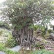 沖縄 聖地と町を垣間見る(その1)