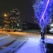予報どおり大雪