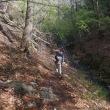 西上州の山を歩く