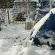 2回目の降雪