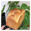 キャラメルシートパン