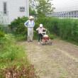7月28日 農園作業日