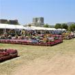 「第26回花と緑のフェスティバル」(初日)