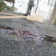 札幌まちなか探検隊 創生川沿いのライラック、北海道頓宮も桜の絨毯