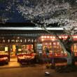 禁煙2875日目 「秋月の夜桜」