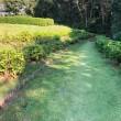 慈眼寺公園の下に流る川