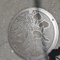 アートアクアリウム & 甲州街道だらだら歩き・2 関野宿