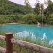 お盆休み 2017 青い池 再び