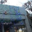 マンションにイルミネーション点灯。元川越市議パワハラ被害の女性職員の懲戒を求める。あほか!