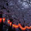 2018上野公園で花見後半_夜祭としての花見