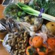 かおりさんちの大山野菜