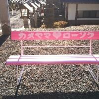 幸せのピンクのベンチ