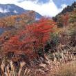 御在所岳の秋