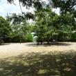 8月10日のまち 打越公園