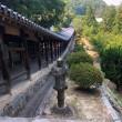 夏の風物詩をいただきました。プラス吉備津神社のなぞ