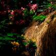 初冬の鶴見緑地公園をぶらり