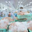 ベトナムは中国市場への依存度が高すぎると警告された