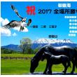 御嶽海 平成29年大相撲11月場所星取表 千秋楽