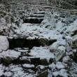 H30年1月12日  雪景色