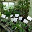 『筑波実験植物園』に行ってきました