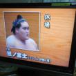 照ノ富士休場