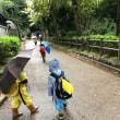 雨の日の夢見ヶ崎動物公園も楽し。