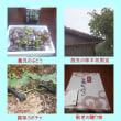 台風18号対策4