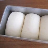 シンプルな食パンが食べたくなる