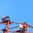 ハヤブサ ・・・ 8月19日 猪名川堤防で