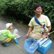 里山体験プログラム「昆虫採集と標本作り」