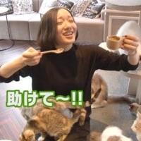 Perfume、ついにラストピースが(*^m^*)