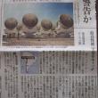 アルマ望遠鏡(公開)