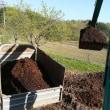 菊の畑を作る為堆肥を撒いて苦土石灰を散布しています