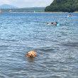 本栖湖でキャンプ