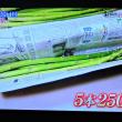 4/23 このアスパラ 1本500円