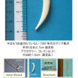 ビンテージ・アジア象牙5cmクロー をみよう