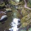 赤目の滝の渓谷美