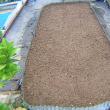 きゅうり栽培、第1弾栽培を終了、秋どりきゅうり種まき、畝作り