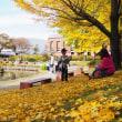 石橋文化センターで菊花展
