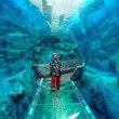 みらいトンネル☆旭山動物園