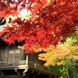 禅寺の紅葉 3