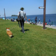 海辺釣り公園