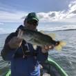5月20日T&S釣り大会のまとめ。