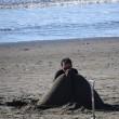 片瀬海岸 砂のイルカ