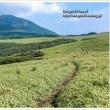 登山道 Vol.2 涌蓋山へ続く草原の道