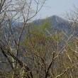 7カ月ぶりの山歩きー奥多摩・川乗橋から川苔山