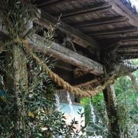 しめ縄と竹で飾られた潮嶽神社 (Photo No.14063)