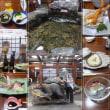 北海道旅行(函館、小樽、札幌)4日目