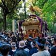 9/16 氷川神社例大祭:1