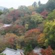 奈良旅行    長谷寺